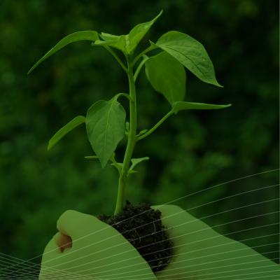 Sustainability at TEL